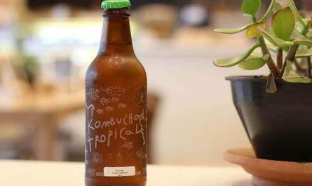Kombucha: todo lo que debes saber sobre esta bebida
