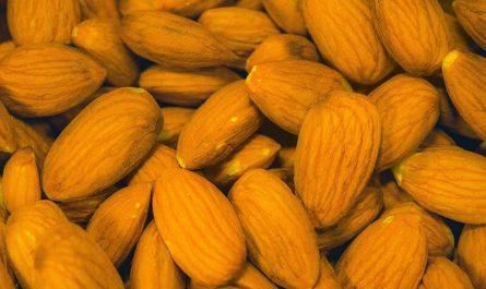 ¿Cuáles son los alimentos más ricos en magnesio?